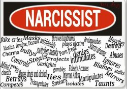 words to describe a narcissist